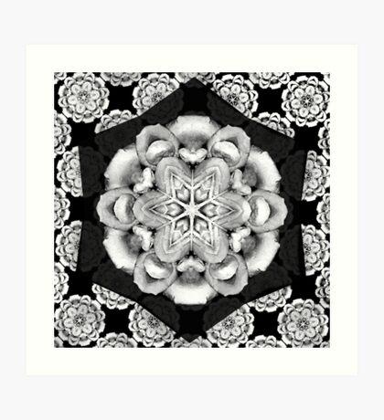 old fashioned lace pattern  Art Print