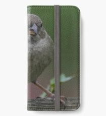 Female Sparrow in the Wild iPhone Wallet