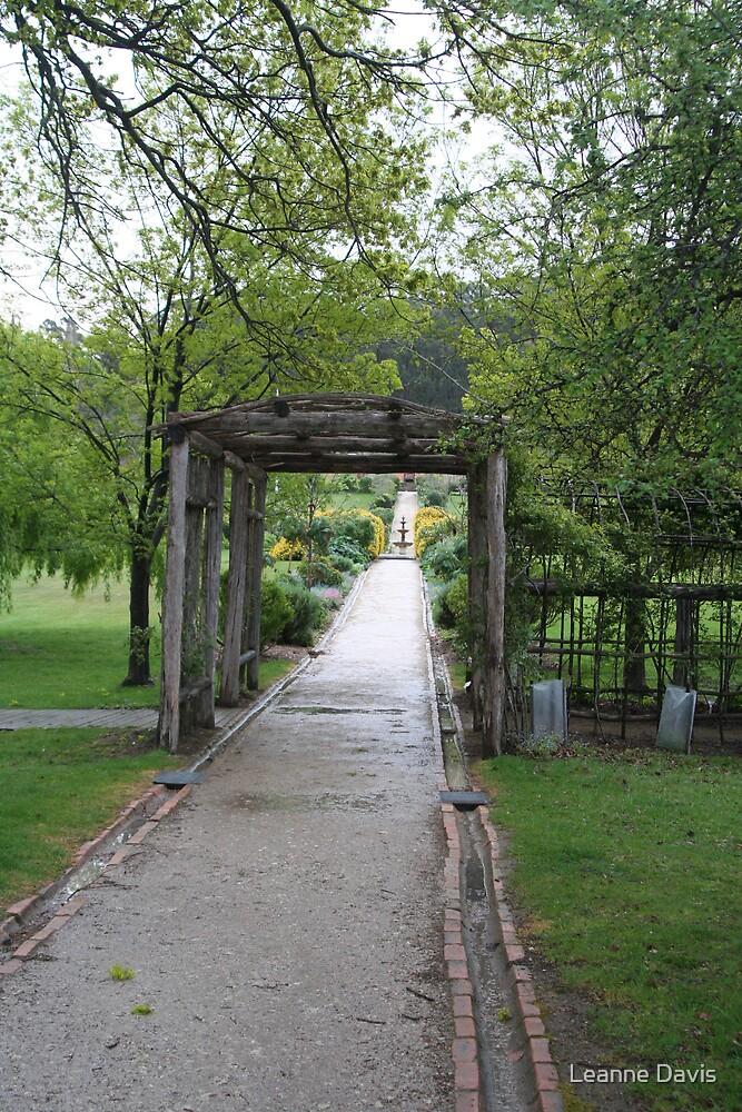Up the garden path by Leanne Davis