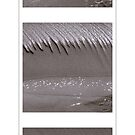 Beach Flow triptych by Duncan Waldron