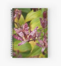 Toad Lily Spiral Notebook