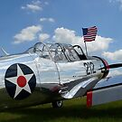 Ein BT-13 Valiant Schulflugzeug mit amerikanischer Flagge. von StocktrekImages