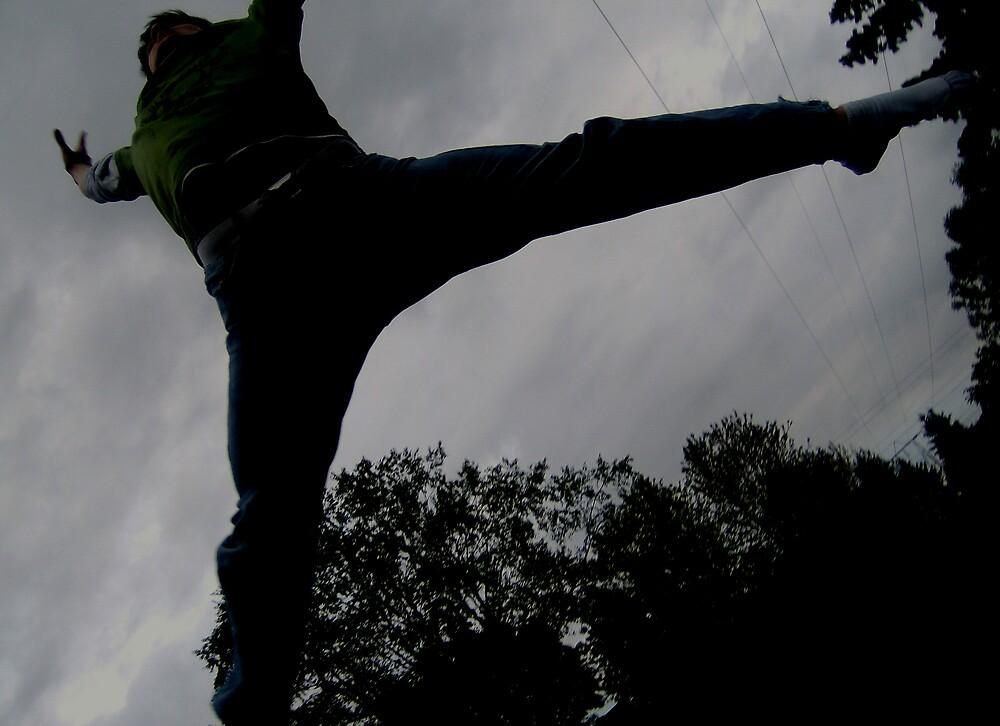 Series of Jumps by Chris  Jurek