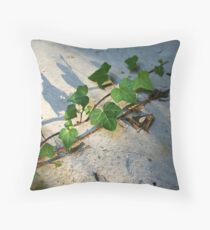 Ivy in abandoned guesthouse Throw Pillow