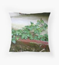 Ivy in abandoned guesthouse 2 Throw Pillow