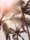 Pink LA Palm Trees by Prettyinpinks