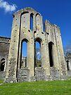 Valle Crusis Abbey,  Llantysilio, Denbighshire, Wales by trish725