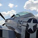Ein P-51D Mustang geparkt auf der Fluglinie. von StocktrekImages