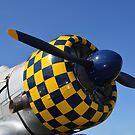 Großaufnahme des Propellers auf einem Texanflugzeug AT-6F. von StocktrekImages