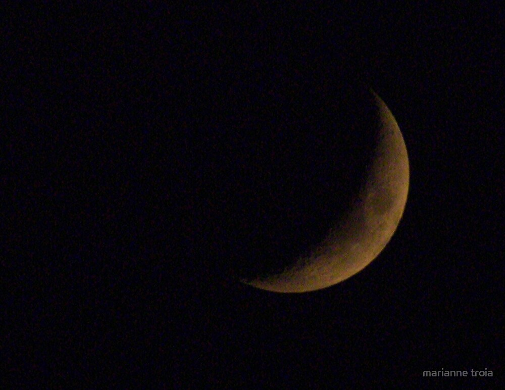another phase of the moon by marianne troia