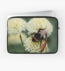 Bee & Soldier Beetle Laptop Sleeve