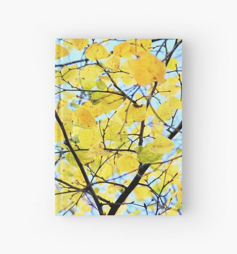 Yellow Autumn Leaves by Samrigg09