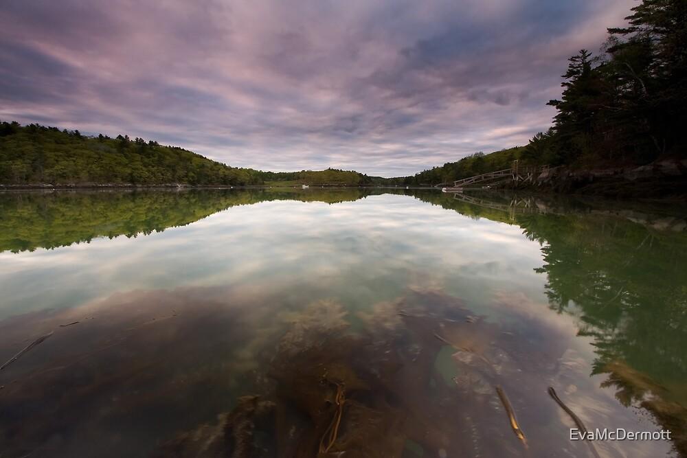 Sea Weed Flow by EvaMcDermott