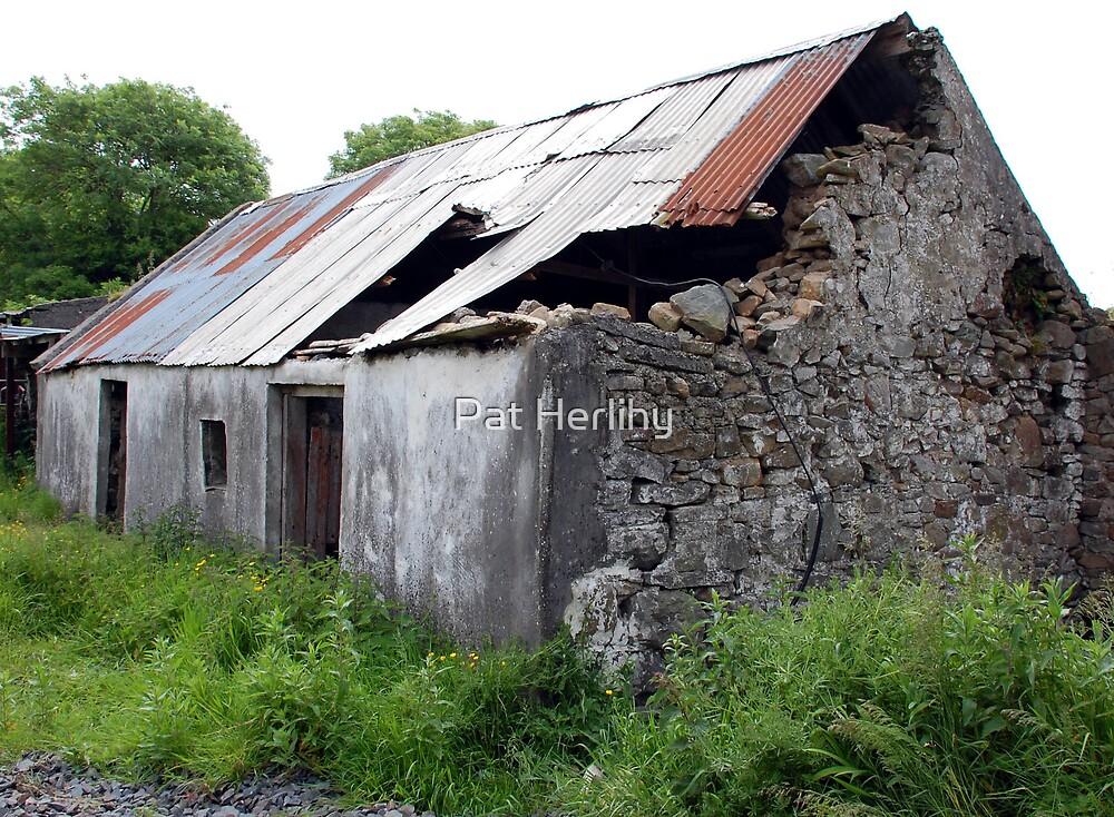 Old Homestead by Pat Herlihy