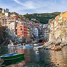 Riomaggiore Harbour and Town at Sunset by Steve Boyko
