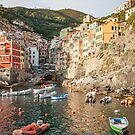 Riomaggiore Town and Harbour at Sunset by Steve Boyko