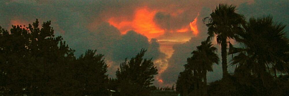 Tropical sky by A Duerden