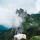 Flower Mountain - Landscape Photography by Michael Schauer
