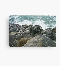 Oregon Coast with Pentax Canvas Print