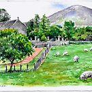 Irish Life by Eva Crawford