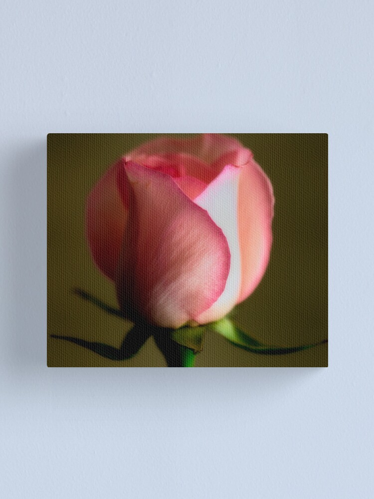 Alternate view of A Rose for Every Moment Canvas Print