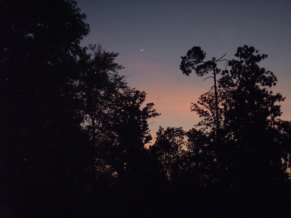MOON at SUNSET by talindsey
