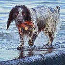 Wet,But Happy..!  by Geoff Carpenter