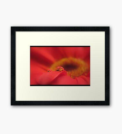 in dreams we love simply Framed Print