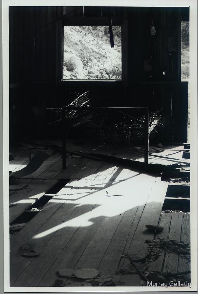 Bed & Breakfast ? in Death valley Nevada by Murray Gellatly