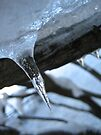 A Lone Icicle by lindsycarranza