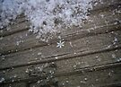 A Perfect Snowflake by lindsycarranza