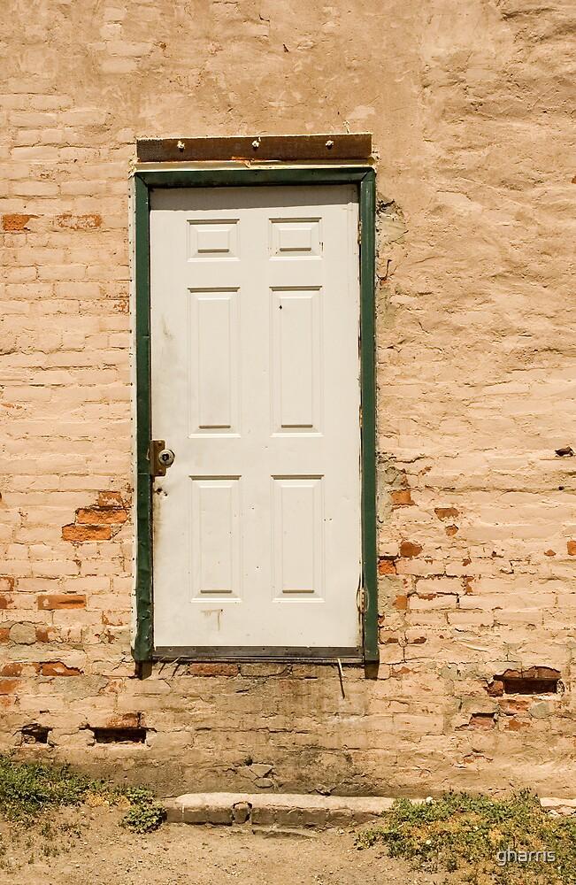 The Door to ..... by gharris