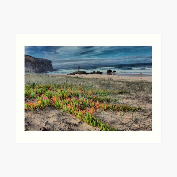 Redhead Beach NSW Australia Art Print