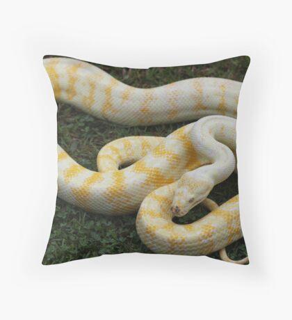Darwin Python - Albino Throw Pillow