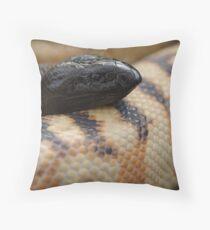 Calico BHP Throw Pillow