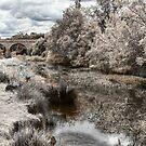 Coal River - Tasmania by Stephen Kilburn