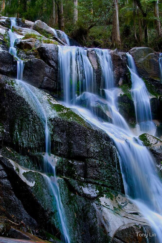 Waterfall near Noojee by Tony Lin