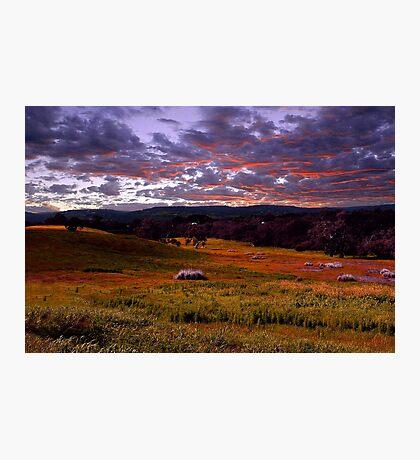 Farmland Sunrise  Photographic Print