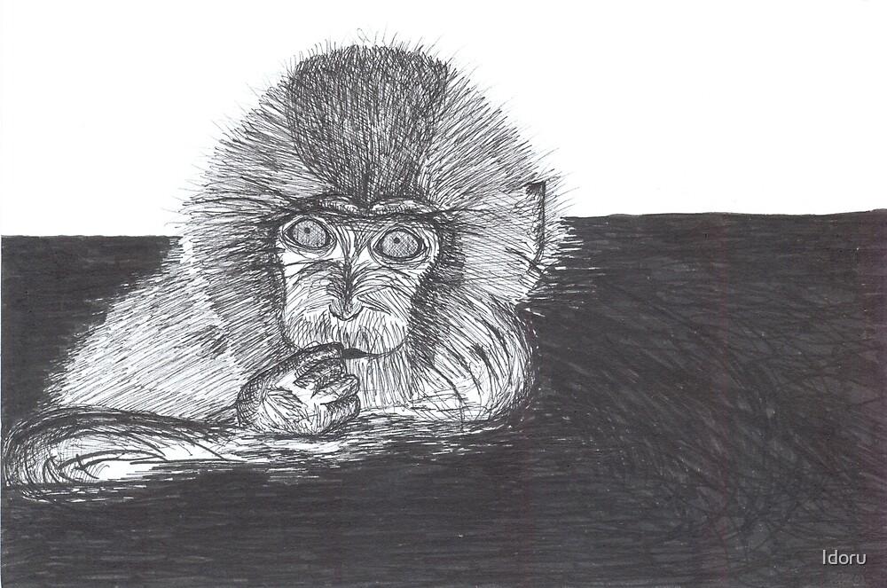 Playful Monkey by Idoru