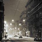 Winter time by Dominika Aniola