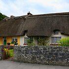 Cottage in Adare by annalisa bianchetti