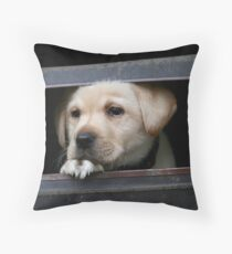 Little Toby Puppy Throw Pillow