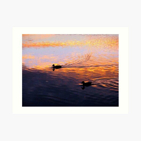 Coloured Water 5 Art Print
