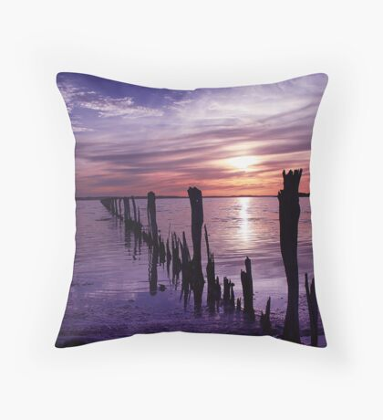 Once was a fence. Throw Pillow