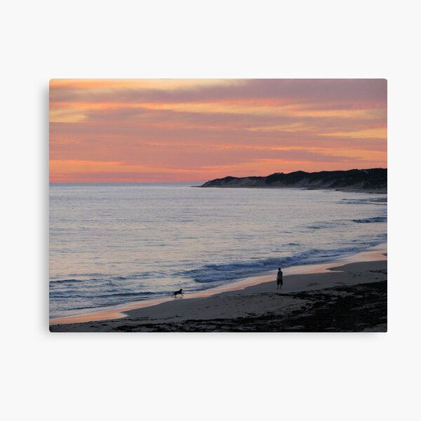 Man and his Dog Canvas Print