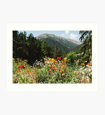 Mountain garden Art Print