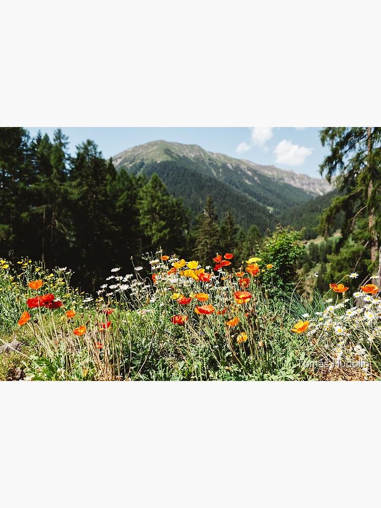 Mountain garden by Hudolin