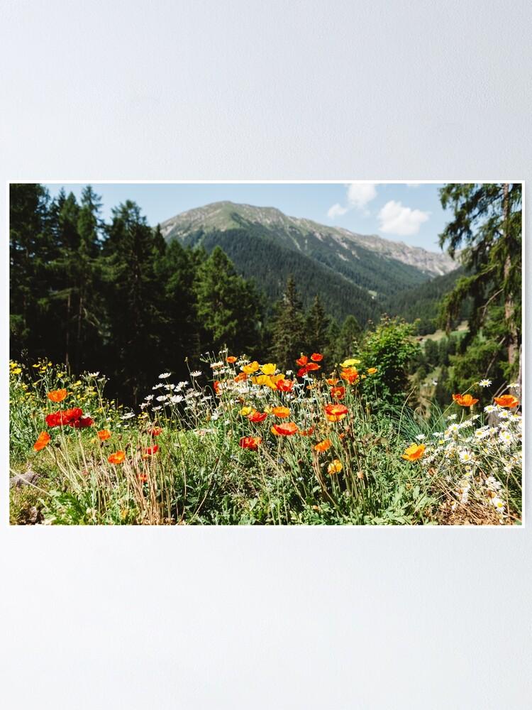 Alternate view of Mountain garden Poster