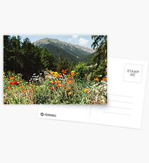 Mountain garden Postcards