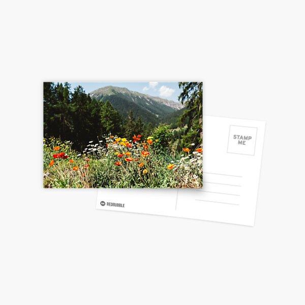 Mountain garden Postcard